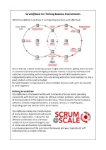 Scrum@Scale For Thriving Business Environments