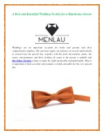 A Best and Beautiful Wedding Necktie for a Handsome Groom