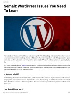 Semalt: WordPress Issues You Need To Learn