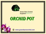 Buy Orchid Pot in Florida at best price-Green Barn Orchid Supplies