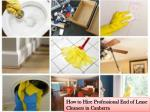 How to Find Professional End of Lease Cleaning Service Provider?