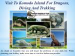 Visit To Komodo Island For Dragons, Diving And Trekking