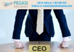 Chief Executive Officer Email List| CEO Mailing List in USA