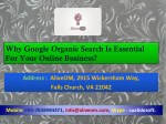 Why Google Organic Search Is Essential For Your Online Business?