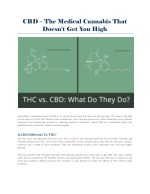 CBD – The Medical Cannabis That Doesn't Get You High