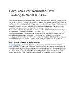 Have You Ever Wondered How Trekking In Nepal Is Like
