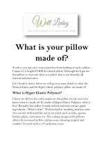 What is your pillow made of?