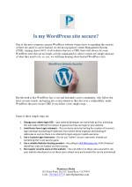 Is my WordPress site secure? - Planeteria Media