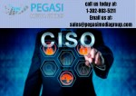 CISO Email Lists | CISO Mailing Lists in USA/UK/CANADA