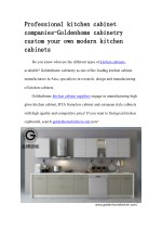 Professional kitchen cabinet companies-Goldenhome cabinetry custom your own modern kitchen cabinets