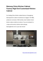 Baineng China Kitchen Cabinet Factory-High End Customized Kitchen Cabinet
