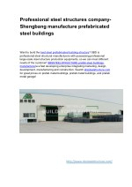 Professional steel structures company- Shengbang manufacture prefabricated steel buildings