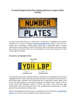 Formatted Registration Plate: Building Blocks to Unique Vehicle Identity