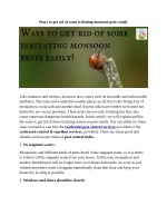 Ways to Get Rid of Some Irritating Monsoon Pests Easily