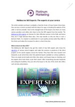 Melbourne SEO Experts: The Experts At Your Service