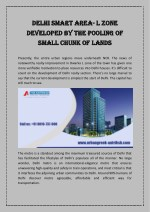 Delhi Smart Area- L Zone Developed By the Pooling of Small Chunk of Lands