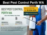 Best Pest Control Perth WA