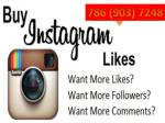 Buy Bulk Instagram Accounts