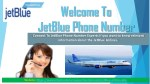 JetBlue Phone Number 1-800-525-9861 USA (Toll-Free)