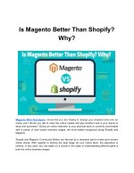 Use the Power of Magento & Shopify to Increase Your Sales