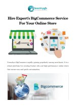 Hire Expert's BigCommerce Service For Your Online Store