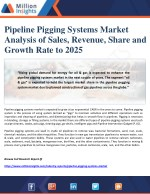 Pipeline Pigging Systems Market Analysis of Sales, Revenue, Share and Growth Rate to 2025