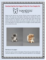 Excellent Dog Toys For PuppiesTo Buy For Your Naughty Pet