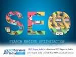 SEO Freelancer Is an Expert Who Uses Only Google Accepted