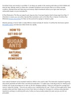 Natural Home Remedy For Side Stitches