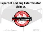 Expert of Bed Bug Exterminator Elgin SC