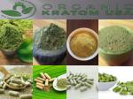 Top Kratom Wholesaler
