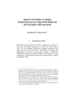 Arab Countries under Participation in the WTO Dispute Settlement Mechanism by Bashar H. Malkawi