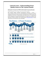 Lunch & Learn - Understanding Power Quality Issues in the Cayman Islands - Corporate Electric