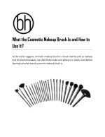 What the Cosmetic Makeup Brush Is and How to Use It?