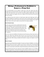 Hiring a Professional in Redditch to Remove a Wasp Nest
