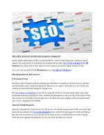 Why utilize services of a professional seo agency in Bangalore?