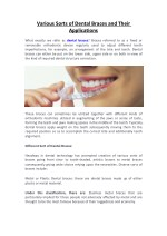 Various Sorts of Dental Braces and Their   Applications