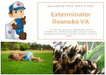 Exterminator Roanoke VA | Termite Control Roanoke VA | Pest Control Roanoke VA