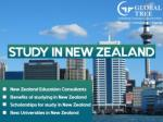Study in New Zealand | Education Consultants for New Zealand - Global Tree