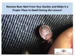 Remove Bees Nest From Your Garden and Make It a Proper Place to Dwell During the Leisure!