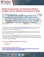 Global Accelerometer and Gyroscope Market Insights, Status, Outlook and Forecast to 2025