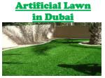 artificial lawn abu dhabi
