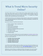 What is Trend Micro Security Online?