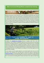 Gibbs Tree Service Offering Efficient residential tree trimming