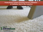 Professional Carpet Cleaning Service Adelaide - A Profitable Deal in the Long Run