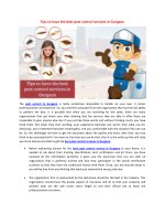Tips to have the best pest control services in Gurgaon