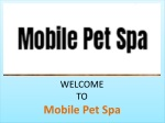 Mobile Pet Spa:Pet Groomer Beverly Hills