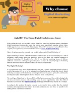 AlphaIRT: Why Choose Digital Marketing as a Career?