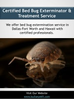 Certified Bed Bug Exterminator & Treatment Service