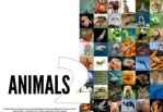 Science - All About Animals 2